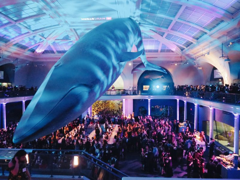 NYU Stern Haskins Holiday Party - American Museum of Natural History, Year In Review, Night at the Museum